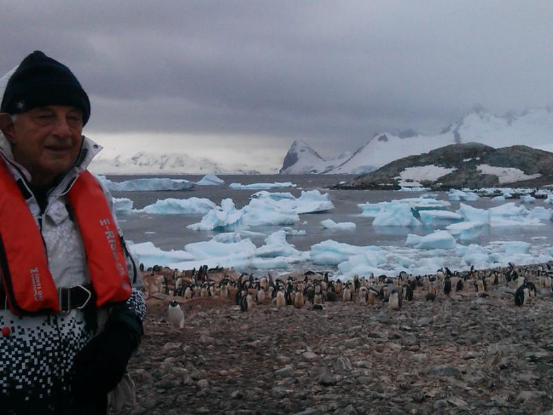 Σε παραλία με πολλούς πιγκουϊνους